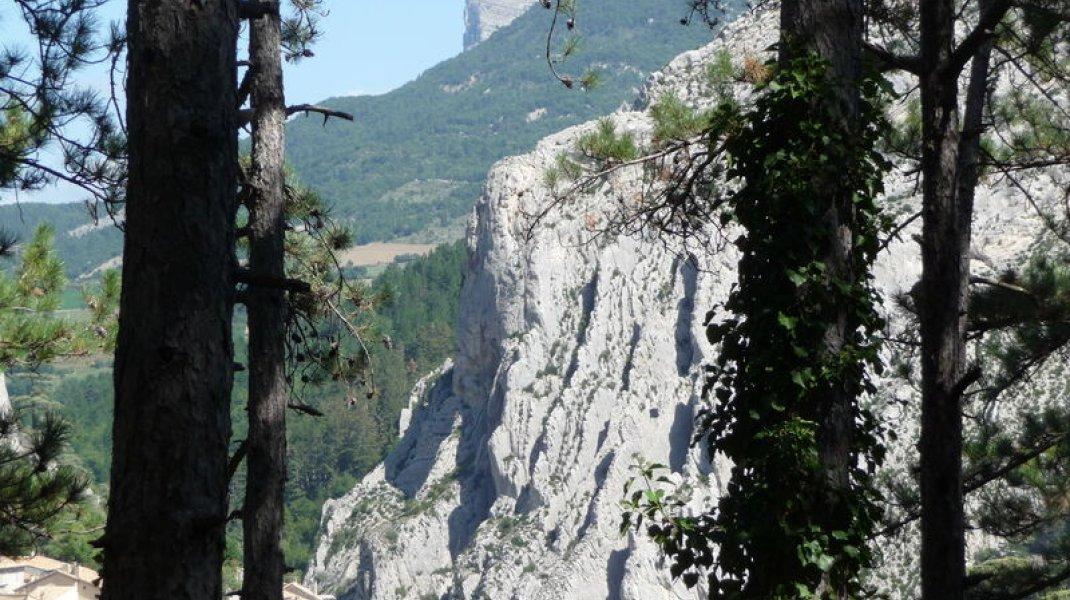 Itinéraire de randonnée - Sentier botanique du Molard (Copyright : Office de Tourisme Sisteron Buëch)