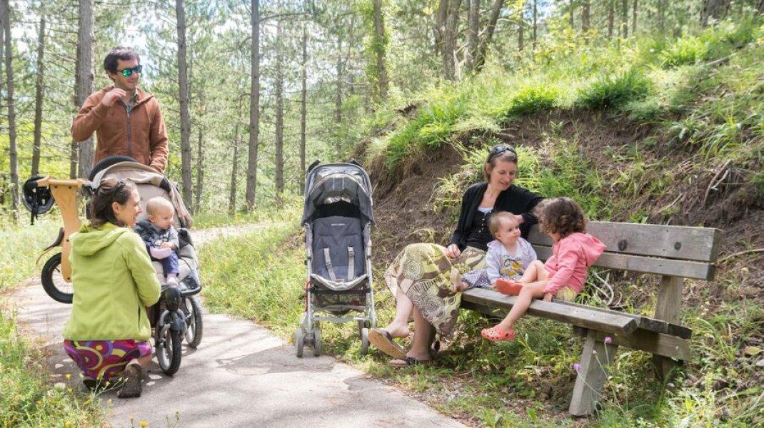 Forêt de Beynaves - Balade en famille avec poussettes (Copyright : Xavier Mordefroid)
