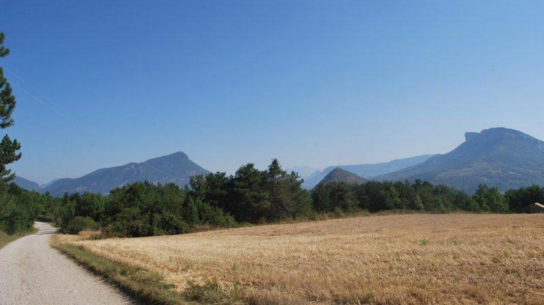 Circuit VTT Le Plateau de Garenne - Plaine agricole (Copyright : Communauté de Communes Sisteron Buëch)