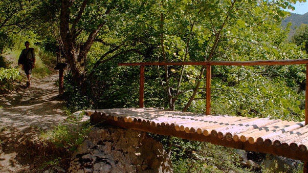Sentier botanique à Orpierre - Pont en bois sur le torrent du Belleric (Copyright : Thierry Robin)