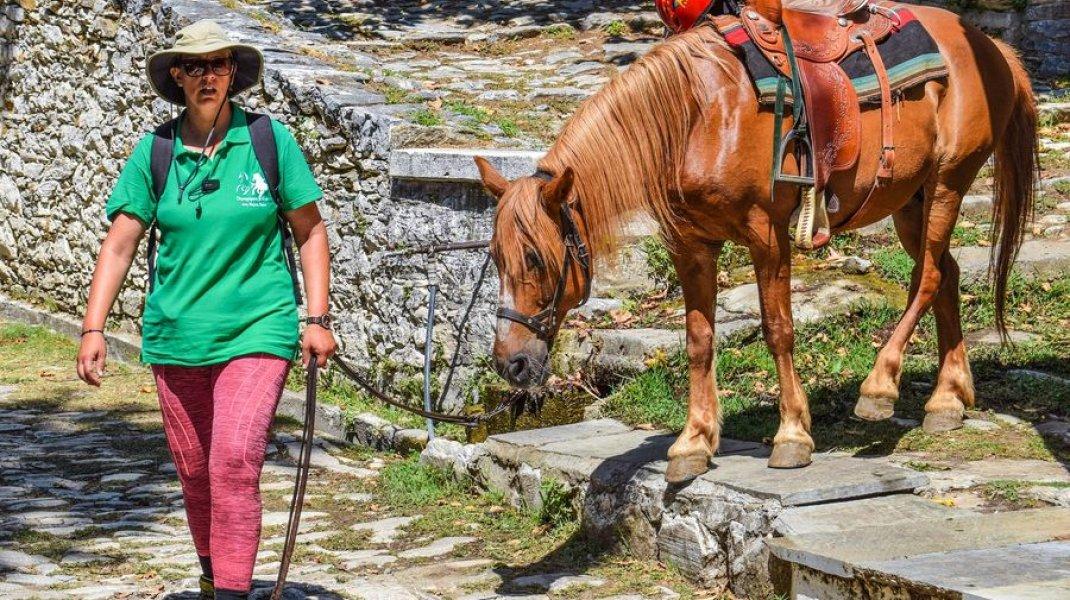 Itinérance équestre - Randonnée à cheval dans le Buëch (Copyright : Pixabay)