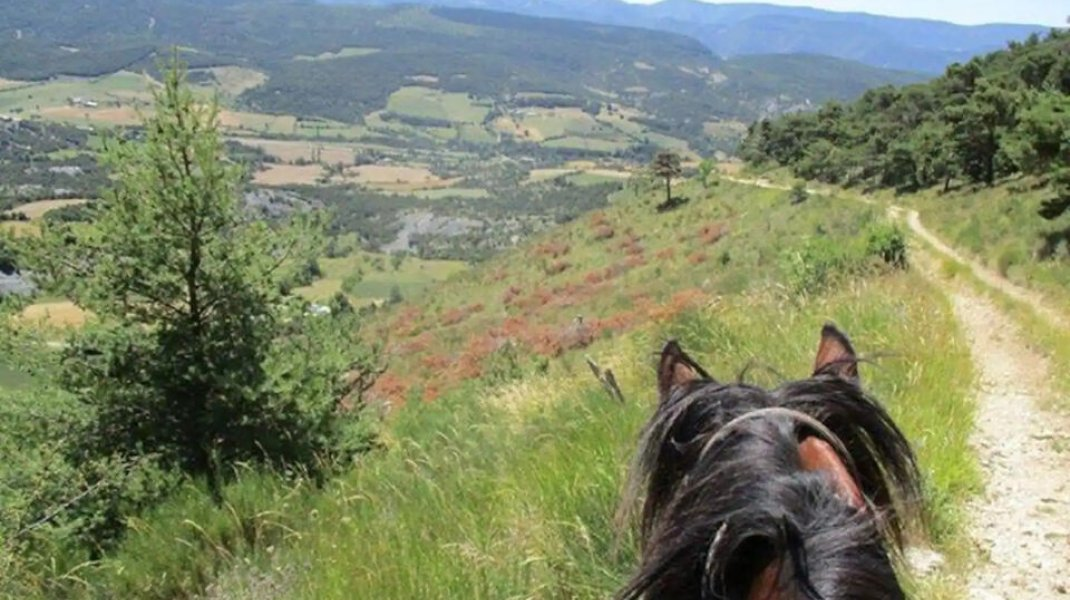Les Gîtes d'Eliane - Promenade à cheval (Copyright : Les Gîtes d'Eliane)
