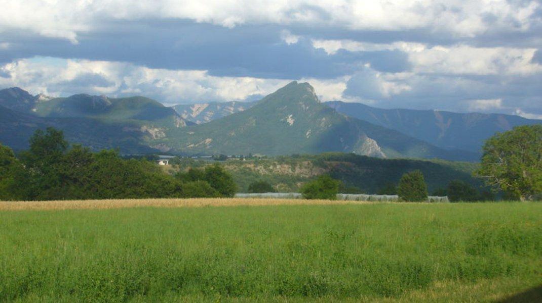 Maison de campagne Aux Deux Oliviers - Vue sur la campagne (Copyright : R. Pintz)