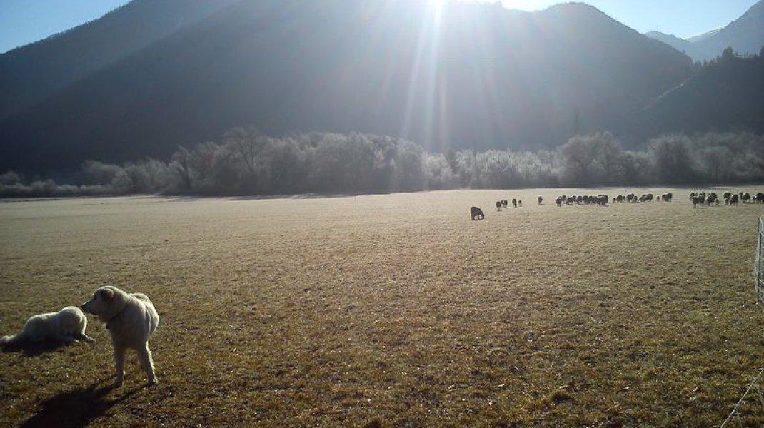 Agriyourte - Les alentours (Copyright : OIT Motte Turriers)