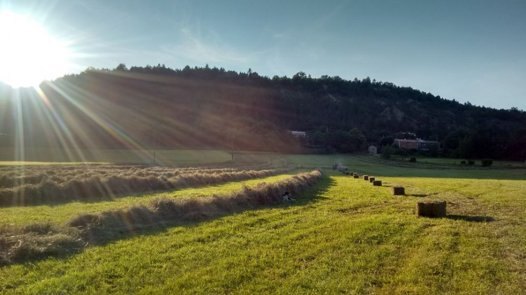 Agri Yourte - Vue environnante (Copyright : Agri Yourte)