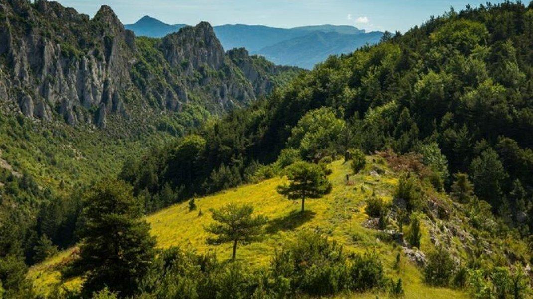 Point de vue verdoyant du Serrois (Copyright : Communauté de communes du Sisteronais Buëch)