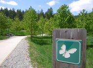 Forêt de Beynaves - Forêt de Beynaves (Copyright : Eric Burlet)