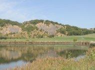 Lac de pêche - Lac de Mison (Copyright : Office de Tourisme Sisteron Buëch)