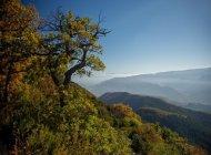 Itinéraire de rando Le Roc de l'Aigle - Vue dégagée durant l'ascension (Copyright : Communauté de Communes Sisteron Buëch)