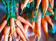 Aux champs des Cougourdes - Légumes en vente directe, en panier et sur les marchés (Copyright : Sibylle AMAT)