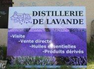 Distillerie de lavande - Distillerie de lavande (Copyright : Office de tourisme Sisteron Buech)