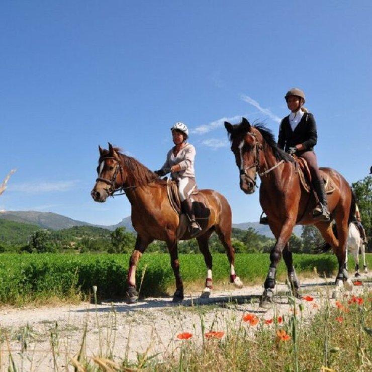 Equitation : route Napoléon à cheval - Equitation : route Napoléon à cheval (Copyright : Alpes de Haute-Provence Tourisme)