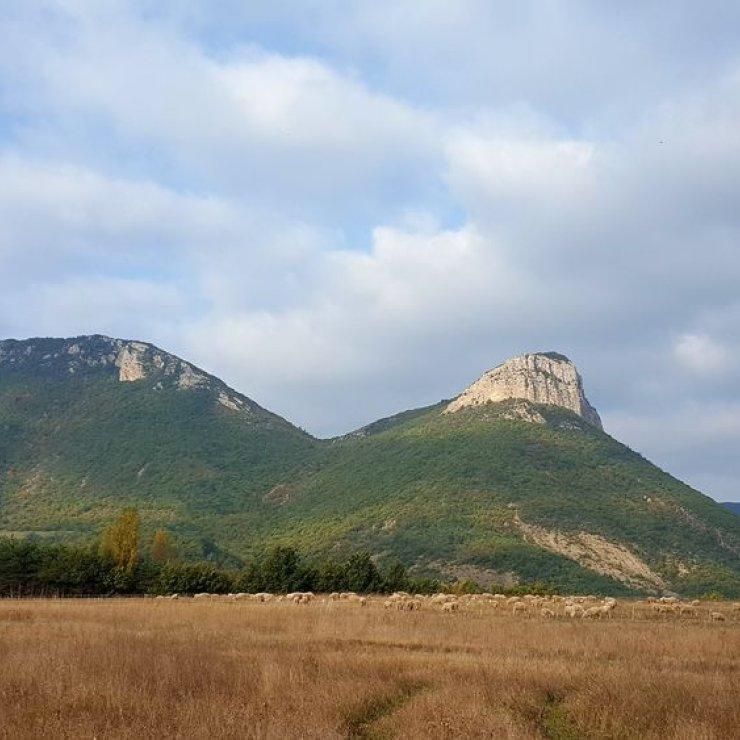 Itinéraire de rando Le Plateau de Lagrand - Vue sur le Montgarde (Copyright : Office de Tourisme Sisteron Buëch)