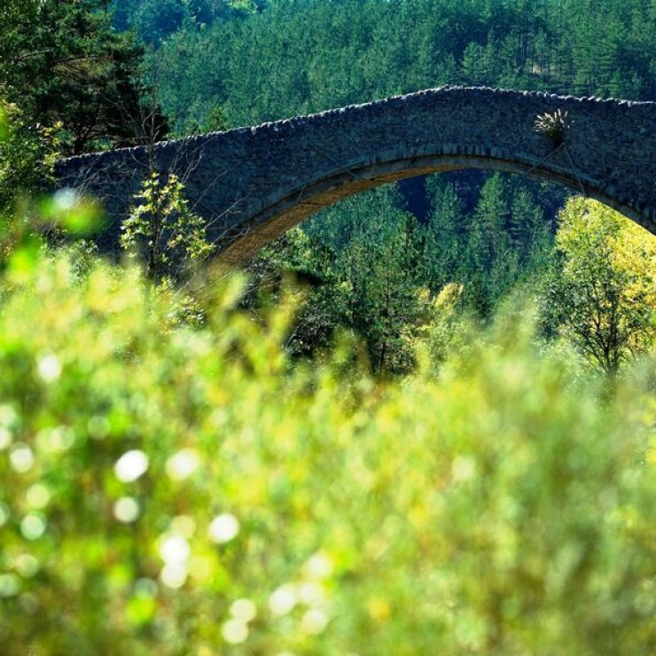 itinéraire VTT Pont de la Reine Jeanne - Abros - Pont de la Reine Jeanne (Copyright : Office de Tourisme Sisteron Buëch)