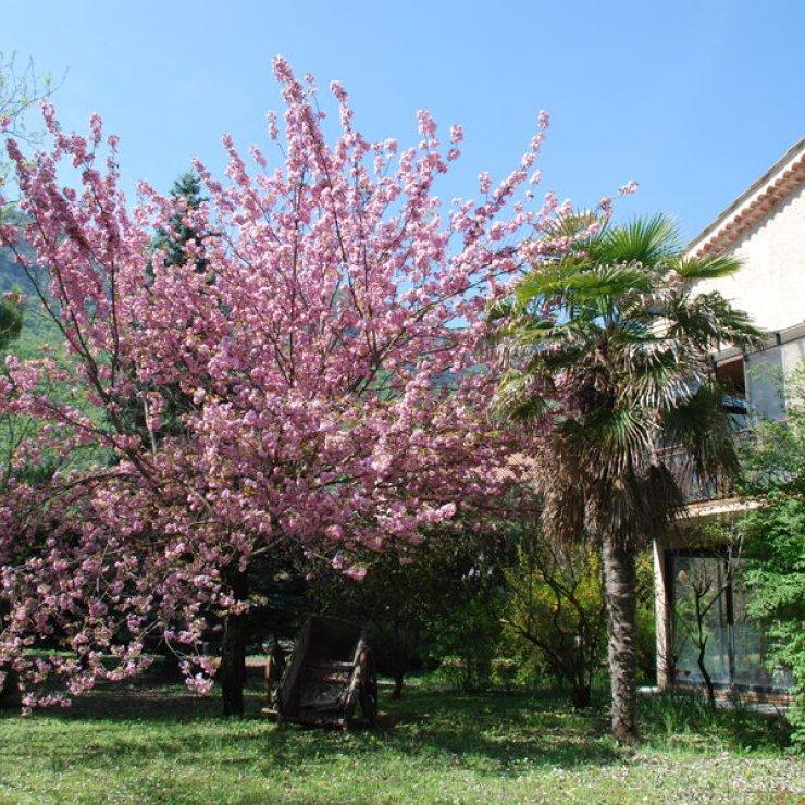 Les Eaux douces - Le jardin au printemps (Copyright : Les Eaux douces)