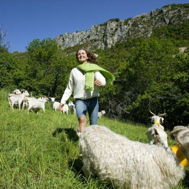 Visite de la ferme (Copyright : La Ferme de la Montagne)